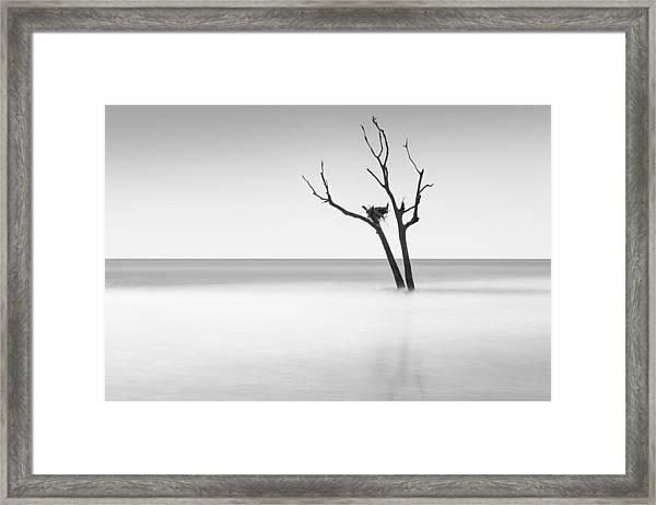 Boneyard Beach - II Framed Print