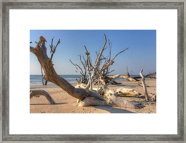 Boneyard Beach Framed Print