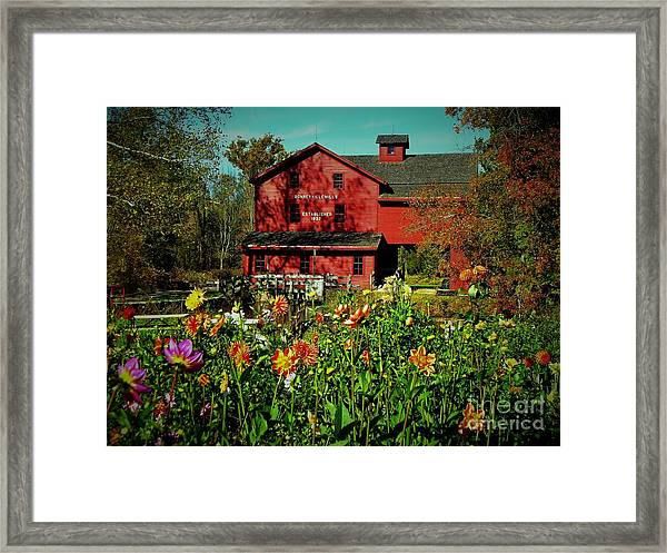 Bonneyville Grist Mill From Dahlia Garden Framed Print by Rory Cubel