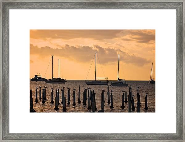 Boqueron 4891 Framed Print
