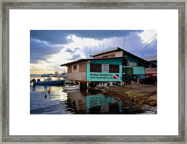 Boqueron 5044 Framed Print