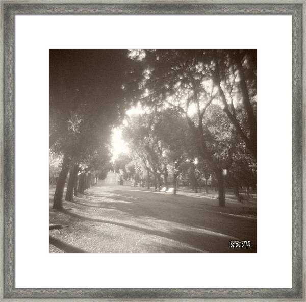 Borghese Gardens Path Framed Print