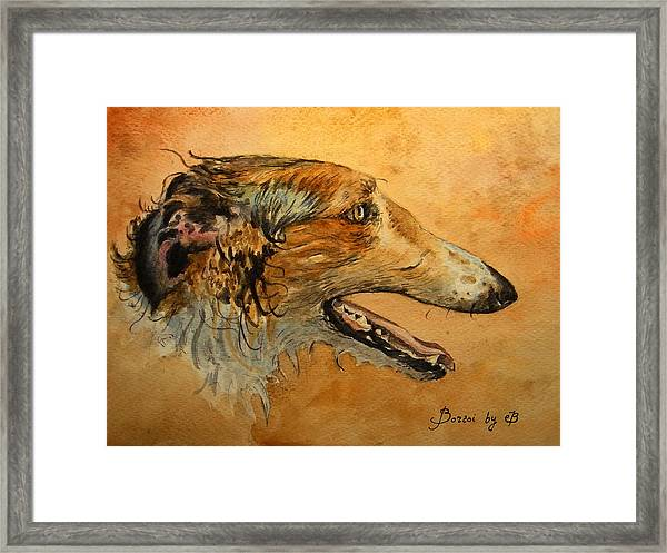 Borzoi Dog Framed Print