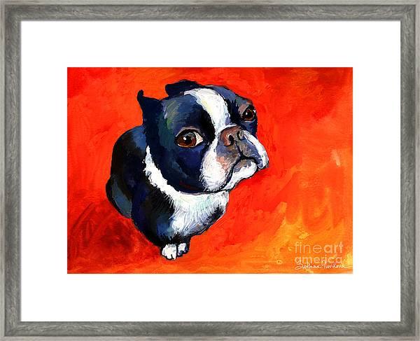 Boston Terrier Dog Painting Prints Framed Print