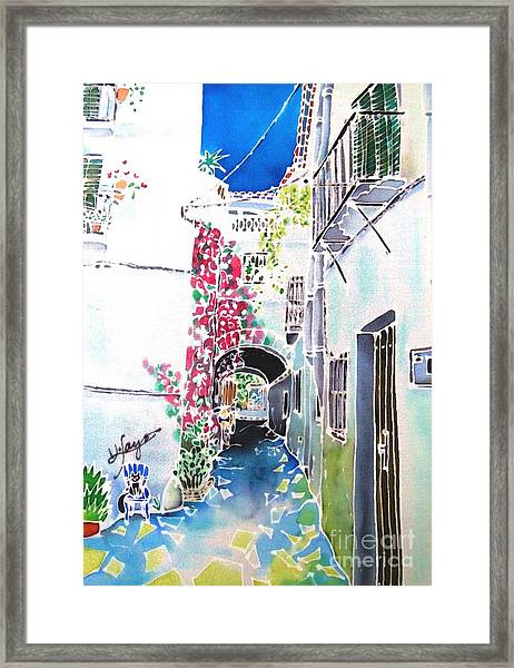 Bougainvillea Path  Framed Print