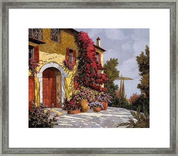 Bouganville Framed Print