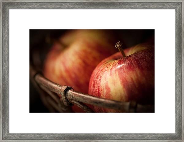 Bountiful Framed Print