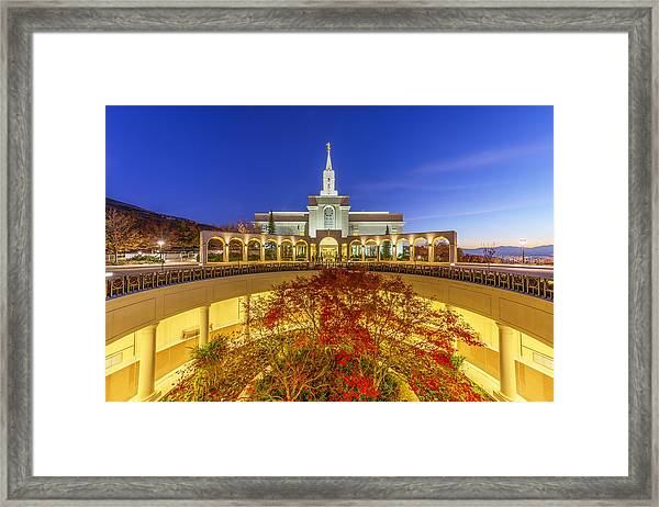 Framed Print featuring the photograph Bountiful by Dustin  LeFevre