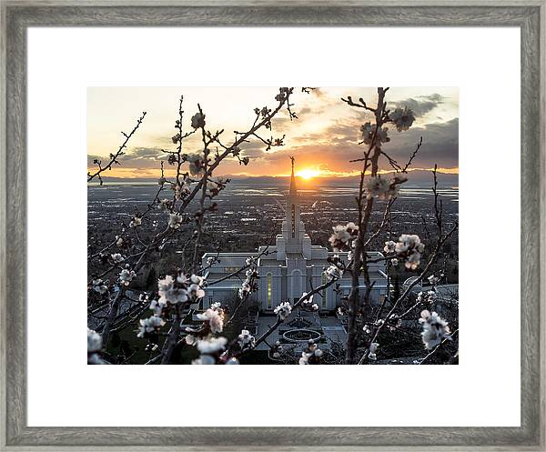 Bountiful Spring Framed Print