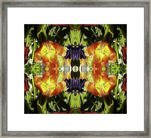 Bouquet Of Tulips Framed Print by Silvia Otte