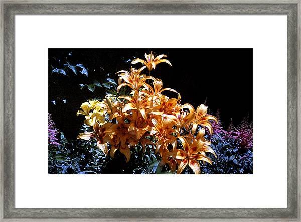 Orange Lilium Bouquet Framed Print