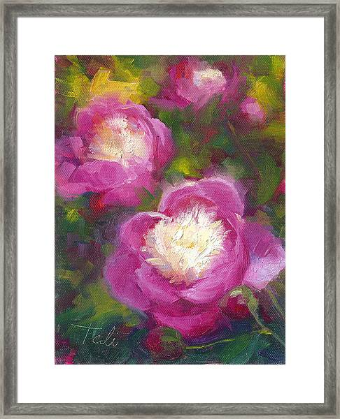 Bowls Of Beauty - Alaskan Peonies Framed Print