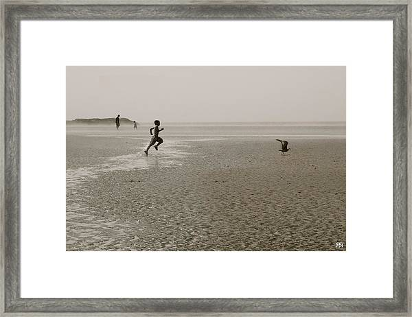 Boy And Gull Framed Print