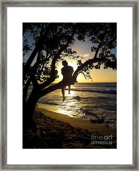 Boy In A Tree Framed Print