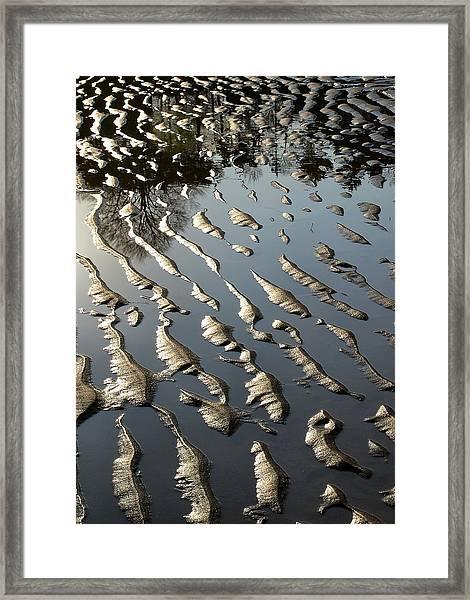 Brackenbury Ripple Framed Print