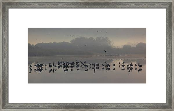 Break Of A New Day Framed Print