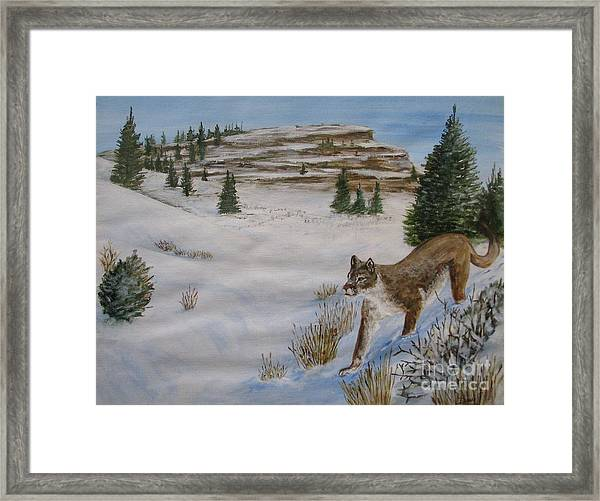 Breakfast Hunt Framed Print by Dana Carroll