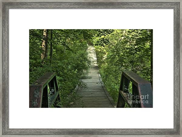 Bridge Into The Woods Framed Print