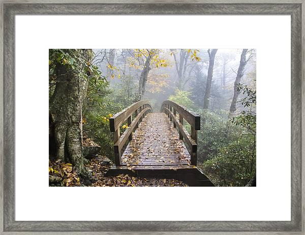 Bridge To Rough Ridge 07 Framed Print