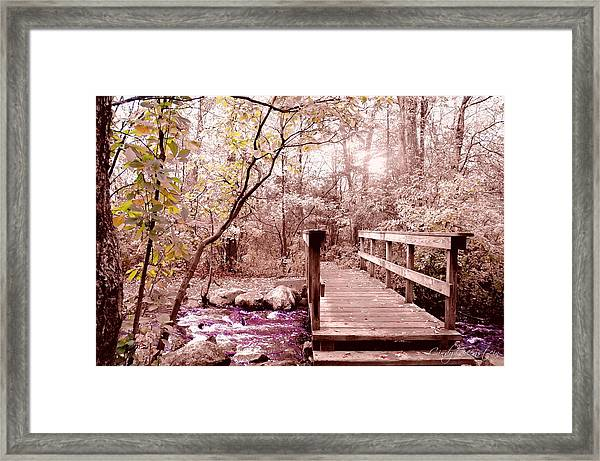 Bridge To Utopia  Framed Print