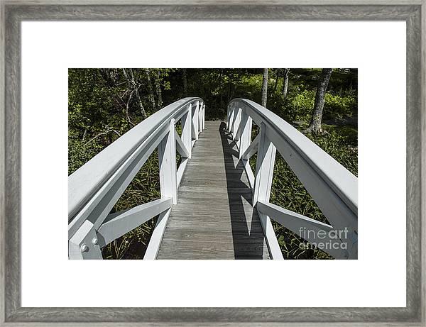 Bridge To Woods Framed Print