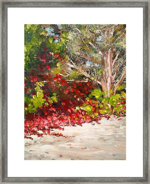Bright Red By The Beach Framed Print