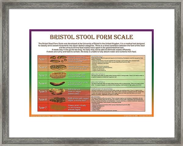 Bristol Stool Form Scale Framed Print