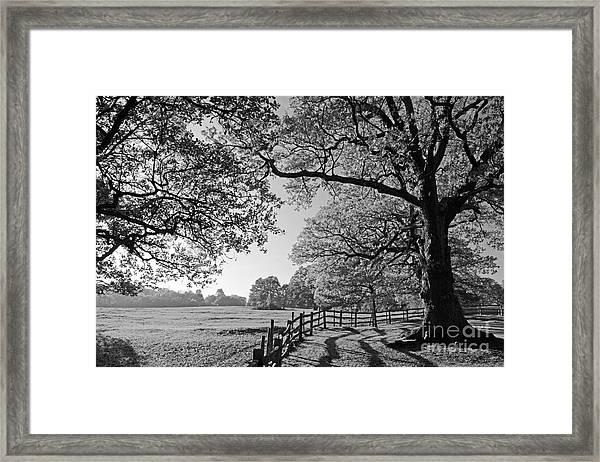 British Landscape Framed Print