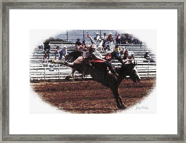 Bronco Rider Reno Rodeo Framed Print