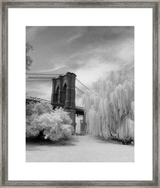 Brooklyn Bridge Willows Framed Print