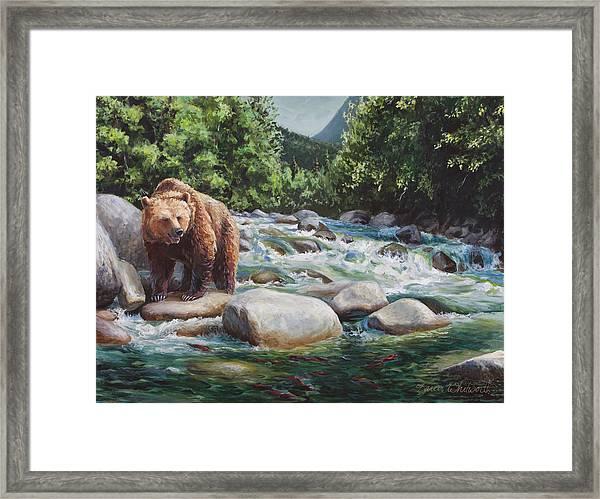 Brown Bear And Salmon On The River - Alaskan Wildlife Landscape Framed Print