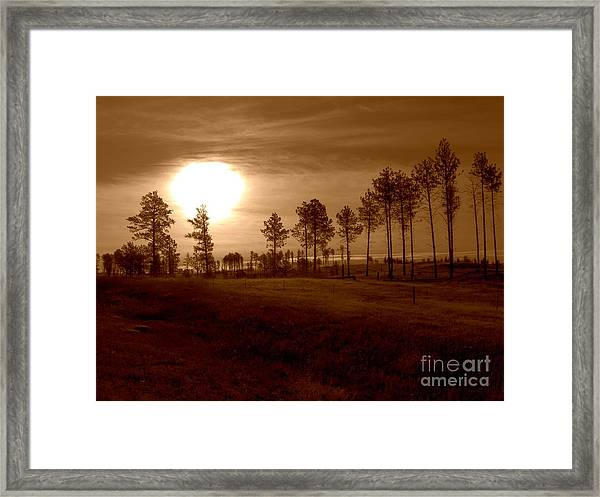 Brown Fog Framed Print