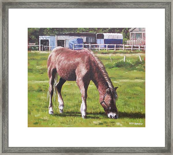 Framed Print featuring the painting Brown Horse By Stables by Martin Davey