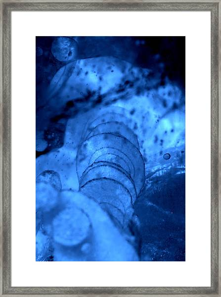 Bubble Stack Framed Print