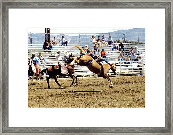 Buck Rider Framed Print