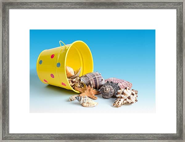 Bucket Of Seashells Still Life Framed Print