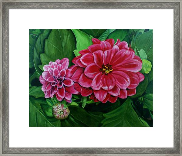 Buds And Blossoms Framed Print