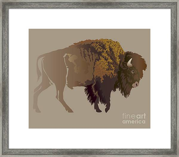 Buffalo. Hand-drawn Illustration Framed Print