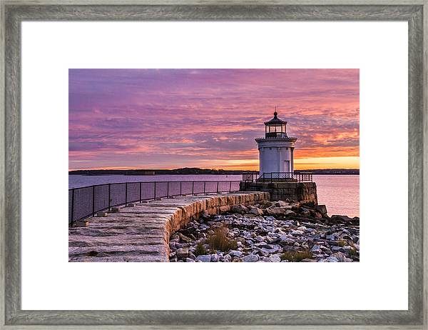 Bug Light Framed Print
