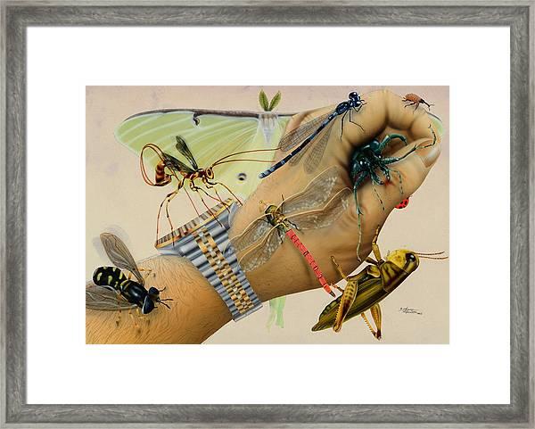Bughand Framed Print
