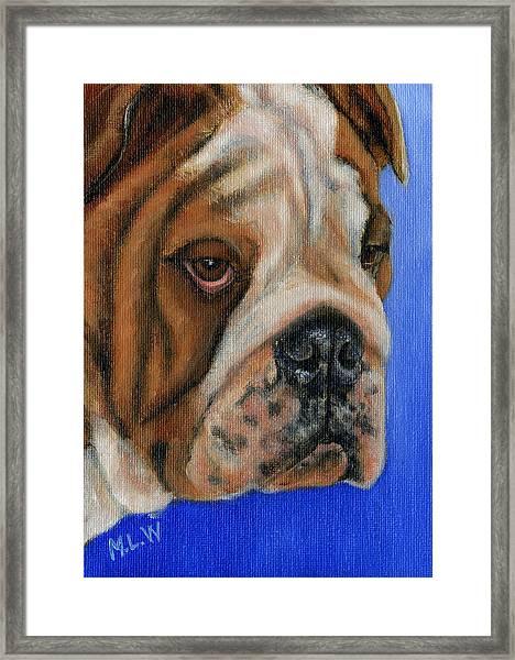 Beautiful Bulldog Oil Painting Framed Print