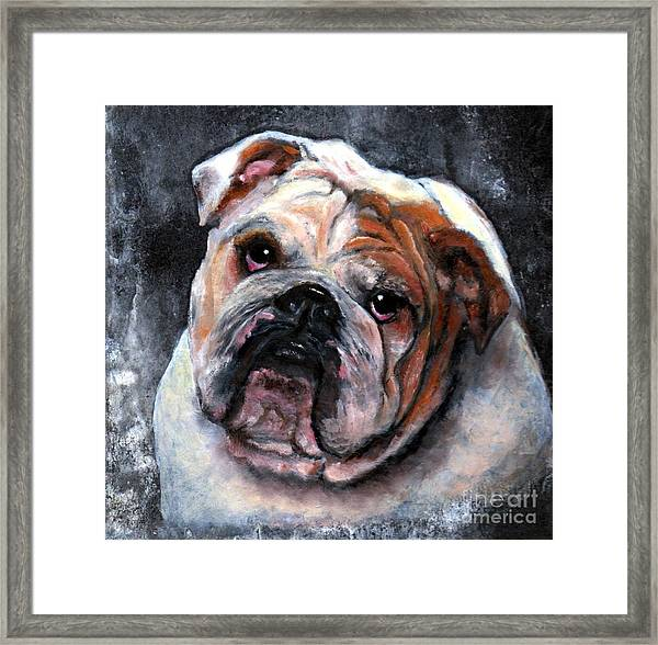 Framed Print featuring the painting Bulldog by Wendy Ray