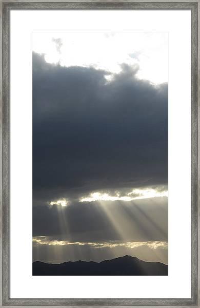 Bullhead Light Framed Print