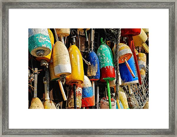 Framed Print featuring the photograph Buoys From Russell's Lobsters by Lois Bryan