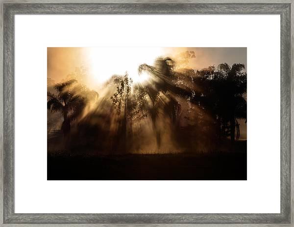 Burst Framed Print
