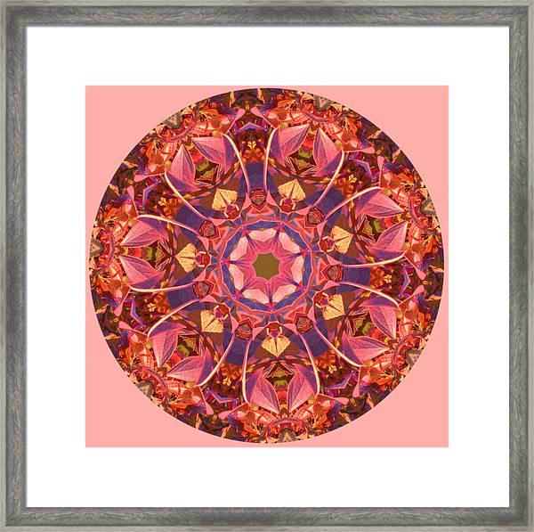Burst Of Fall Mandala Framed Print