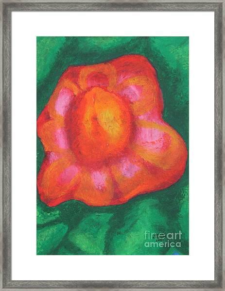 Bursting Bloom Framed Print