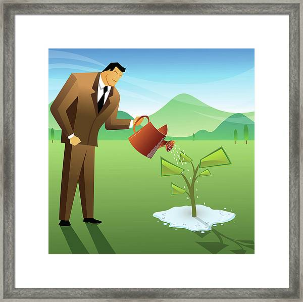 Businessman Watering A Money Plant Framed Print