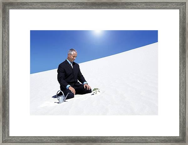 Businessman With A Watering Can Watching A Plant Planted In The Sand In A Desert Framed Print by John Cumming
