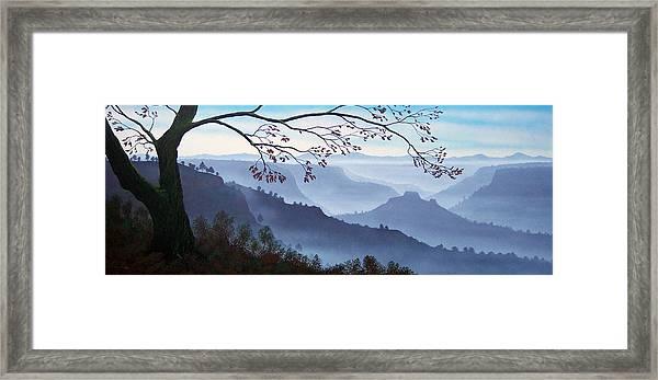 Butte Creek Canyon Mural Framed Print